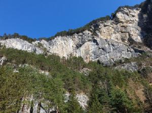 Felsreinigung Rynächt und Neubau Schutzdamm